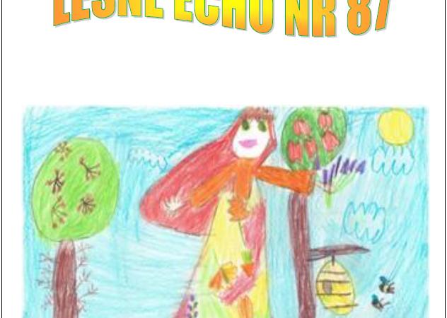 """Gazetka Przedszkolna """"Leśne Echo"""" – Jesień 2020"""