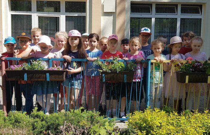 Akcja ukwiecamy przedszkolny taras i ogród  – Gr. IV i V