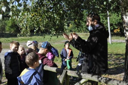 2020-09-28 Jesien w lesie gr5 04