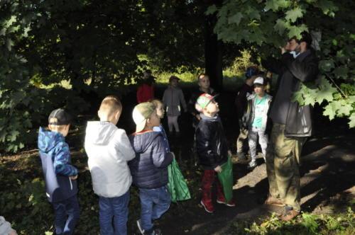 2020-09-28 Jesien w lesie gr5 05