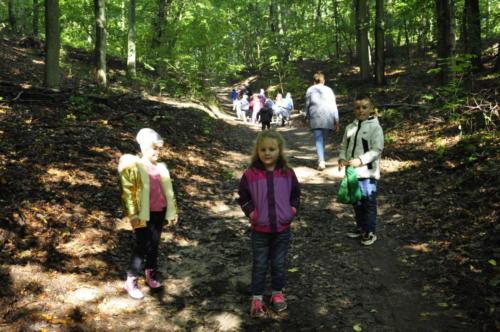 2020-09-28 Jesien w lesie gr5 09