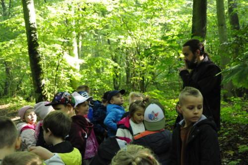 2020-09-28 Jesien w lesie gr5 10