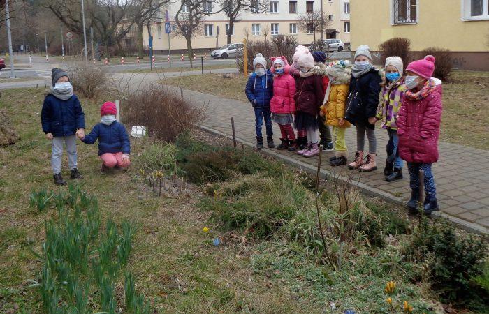 Spacer w poszukiwaniu wiosny – Gr. III