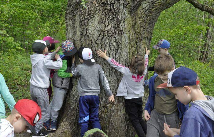 """Warsztaty edukacyjne """"Magiczne Drzewo"""" w Centrum Edukacji Ekologicznej w Myślęcinku- Gr. V"""