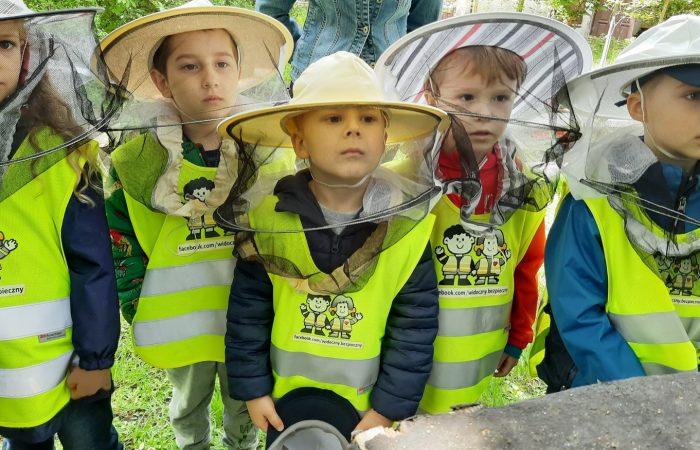 """Zajęcia edukacyjne z okazji """" Światowego Dnia Pszczoły"""" w Ogrodzie  Botanicznym UKW  – Gr. II"""