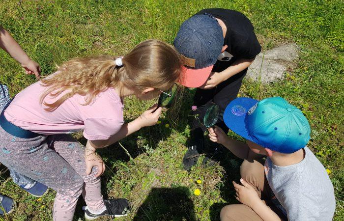 """Warsztaty edukacyjne """"Leśni detektywi przyrody"""" w Centrum Edukacji Ekologicznej  w Myślęcinku – Gr. IV"""